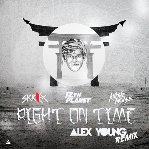 Skrillex 12th Pl Kill the Noise - Right On Time (Alex Young Remix)